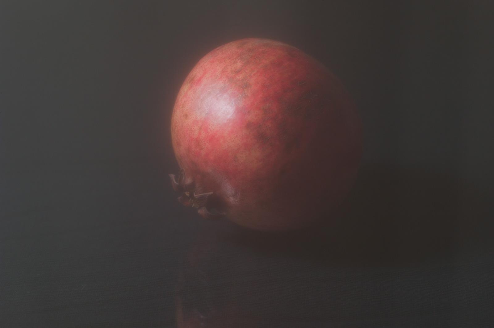 The fruit of the dead, 2019, Archival inkjet print mounted on aluminum, 90 x 140 cm, ed. 5 + AP