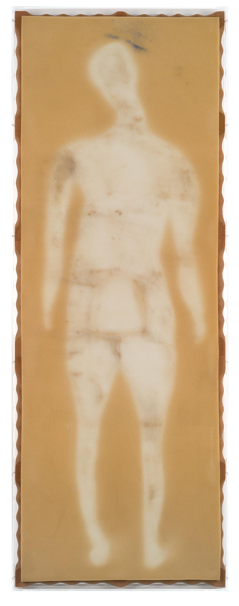 Development, 2015/18, Sponge foam, mahogany, acrylic glass, 192,5 x 71,5 x 7,5 cm