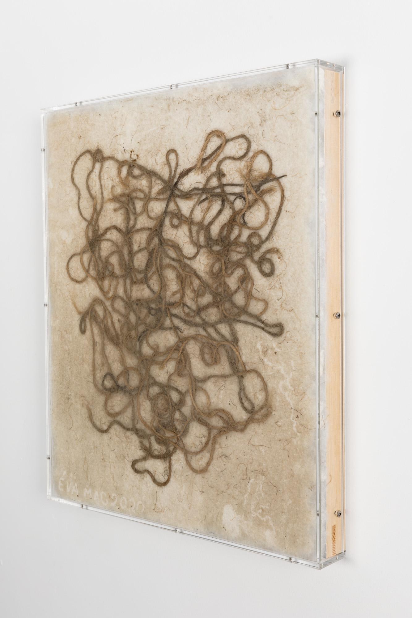 Minimal Information Zsinór, 2020. Hempstring on wadding in artist's frame (plexiglass, wood and aluminum), 61,5 x 51,5 x 6 cm