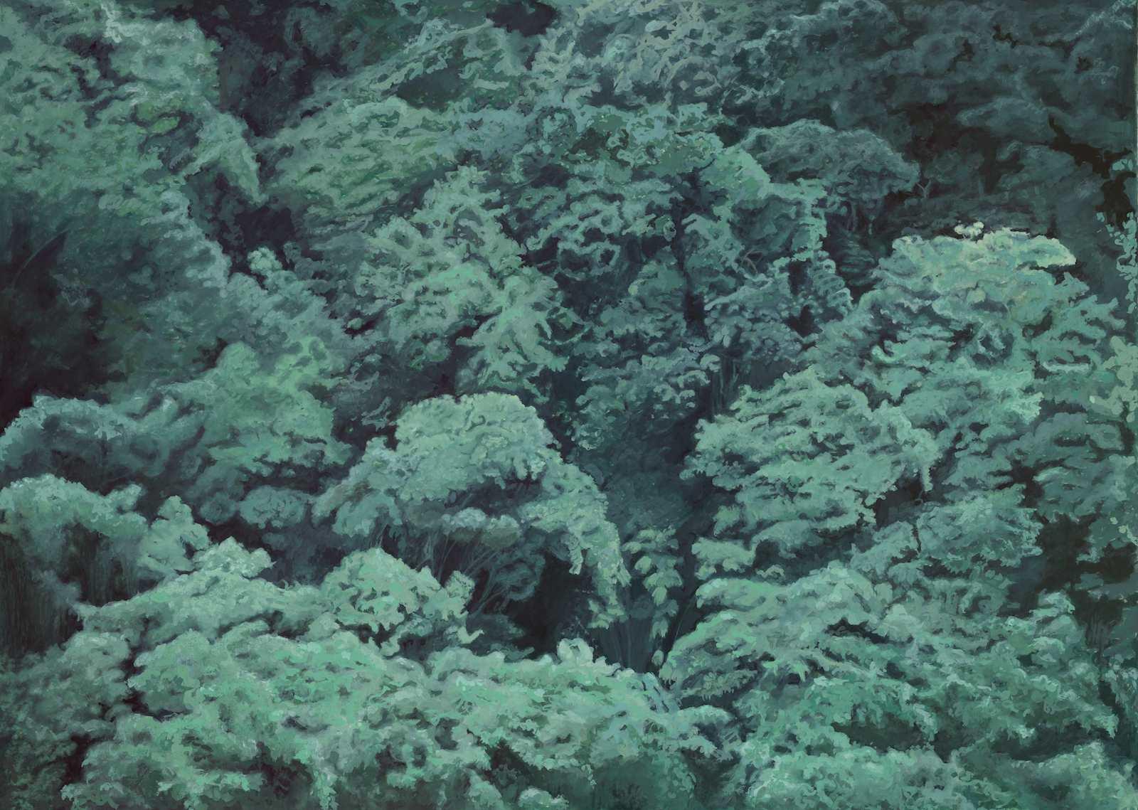 Vegetation, 2009, gouache on paper, 51 x 71 cm