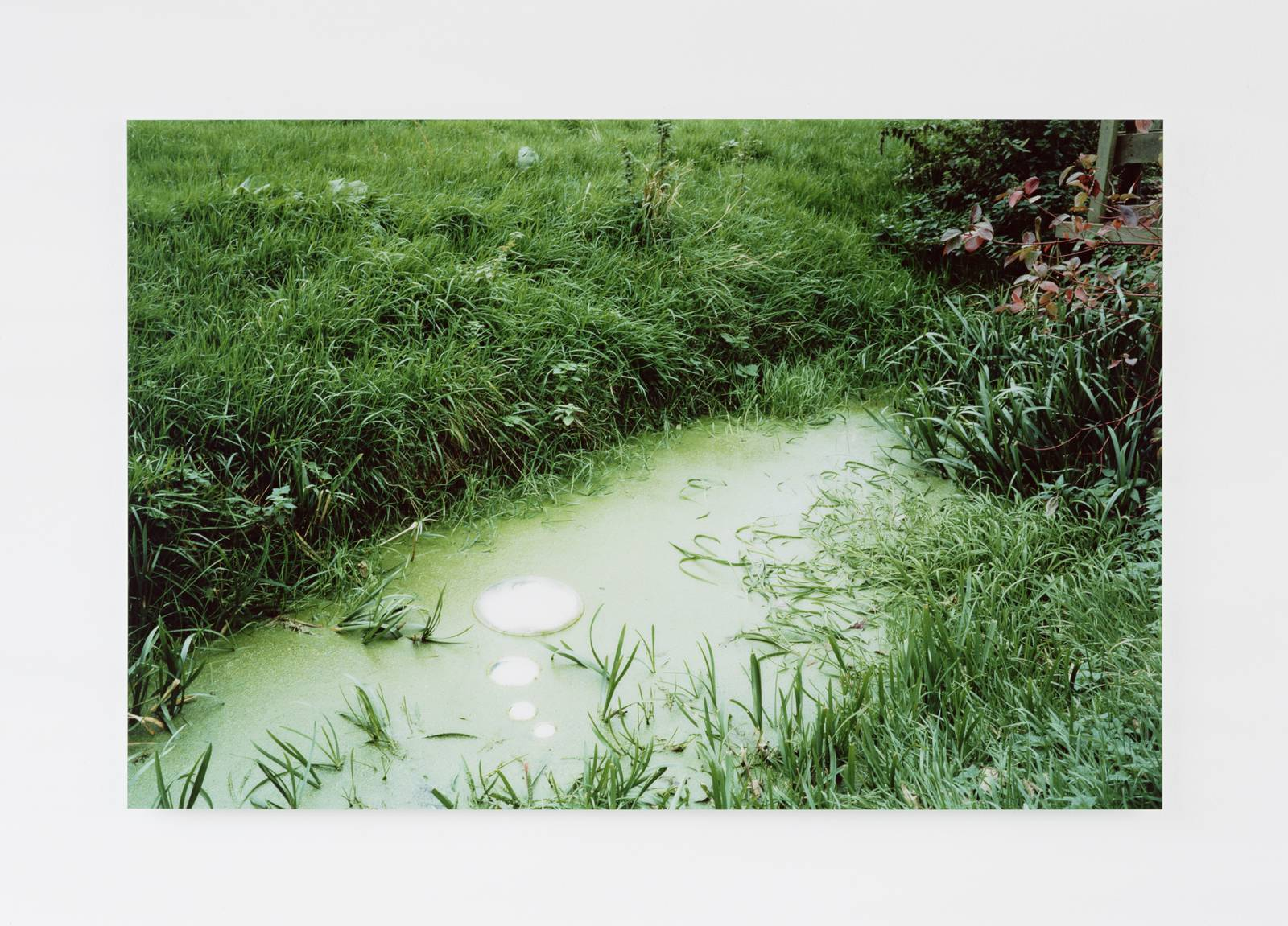 In thought, 2002, colour photo on di-bond, perspex, 120 x x 178 cm