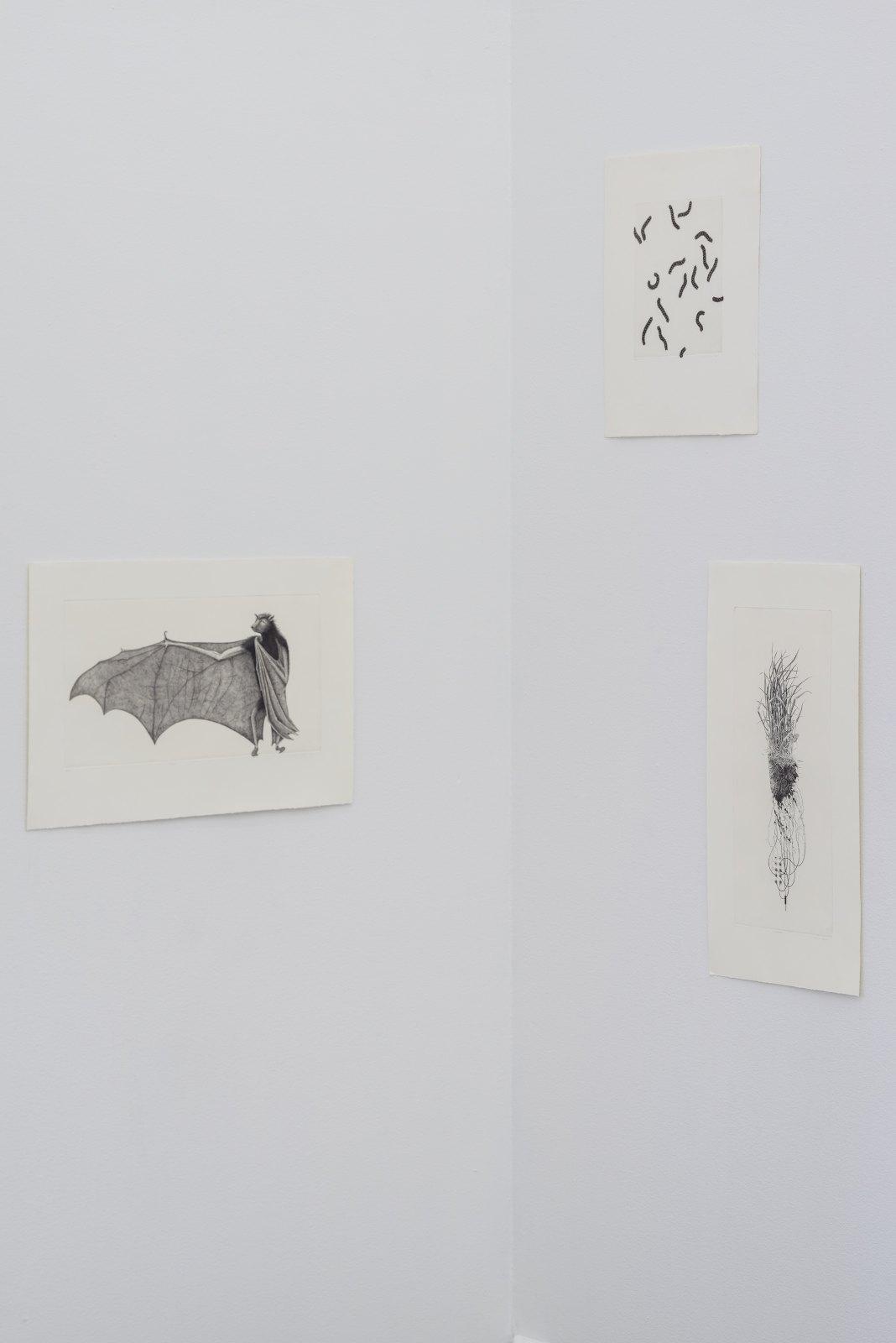Ulla Fries, Filosofen, 2000, Copperplate engraving, 25 x 49 cm, Ed. 90. Larver, 1982, copperplate engraving, 24,5 x 19 cm, Ed. 90. Jordmodem, 1997, Copperplate engraving, 49 x 20,5 cm, Ed. 90