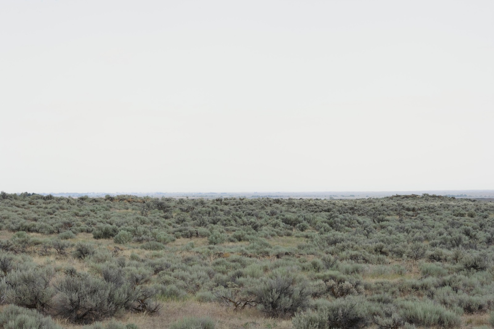 From the west, 2009, giclée print mounted on aluminum, 120 x 180 cm, ed. 5