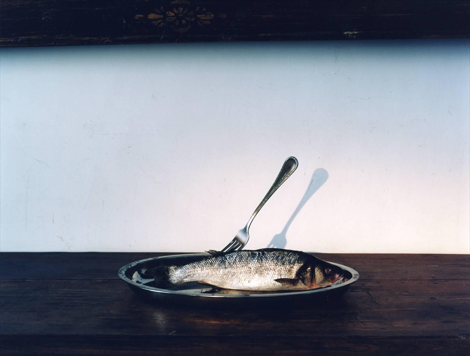 Fish, 2015, C-print, 46,5 x 60 cm