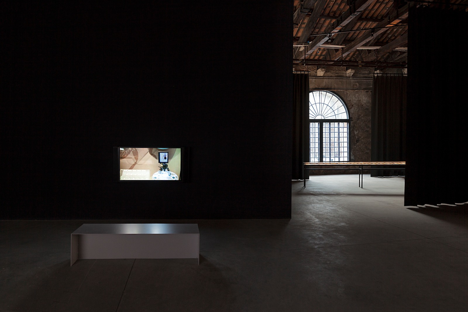 Installation view Excavation of the image - Imprint, shadow, spectre, thoughtSolo exhibition, the Swedish Pavilion at the 56th International Art Exhibition of la Biennale di Venezia: Arsenale, Venice, 2015