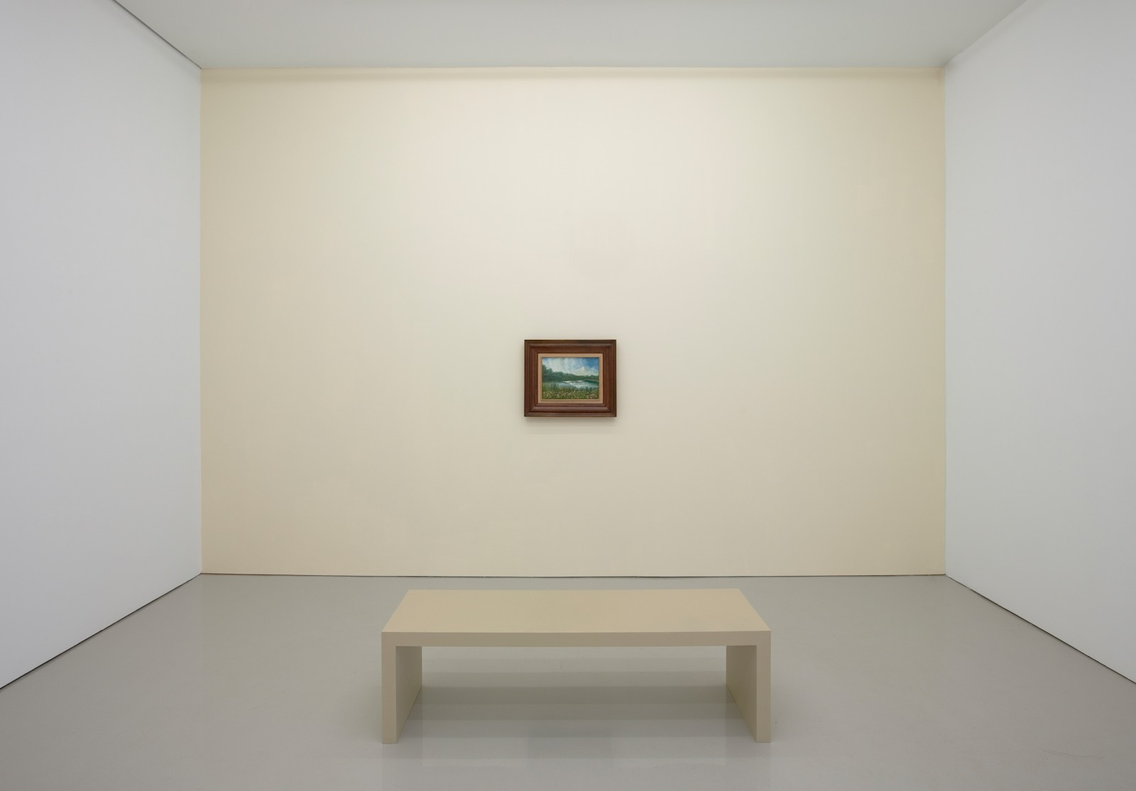Installation view, Moving a Mountain, 2008, found painting, photograph, framed text, photo 152.4 x 182.9 cm, painting 52.4 x 62.5 cm, framed text 64.1 x 56.2 cm, variable installation, unique. Installation view, D'Amelio Terras, New York, USA, 2008
