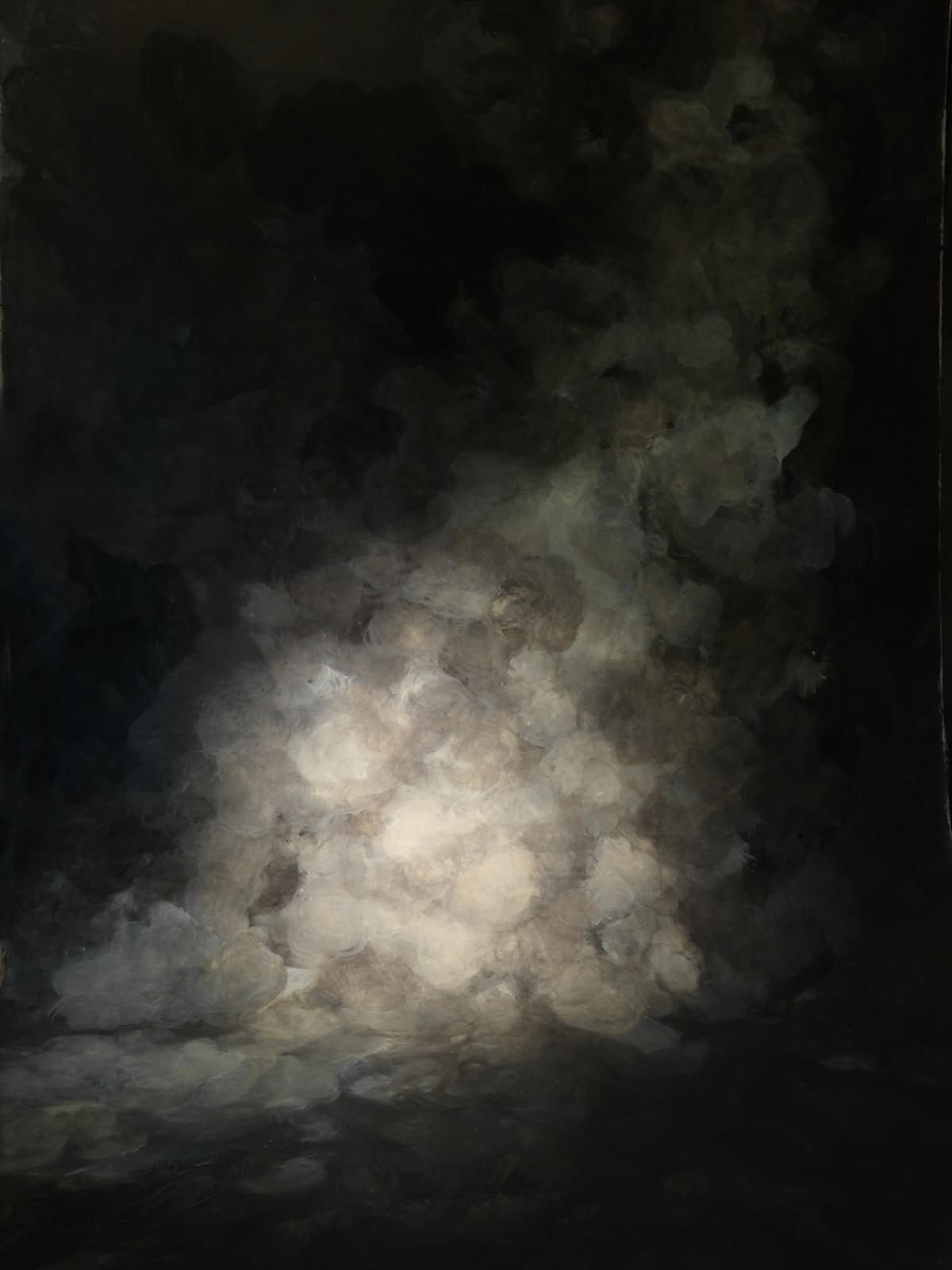 Belladonna Exposed, 2014, pigment print on aluminium, 115 x 91 cm, ed. 5