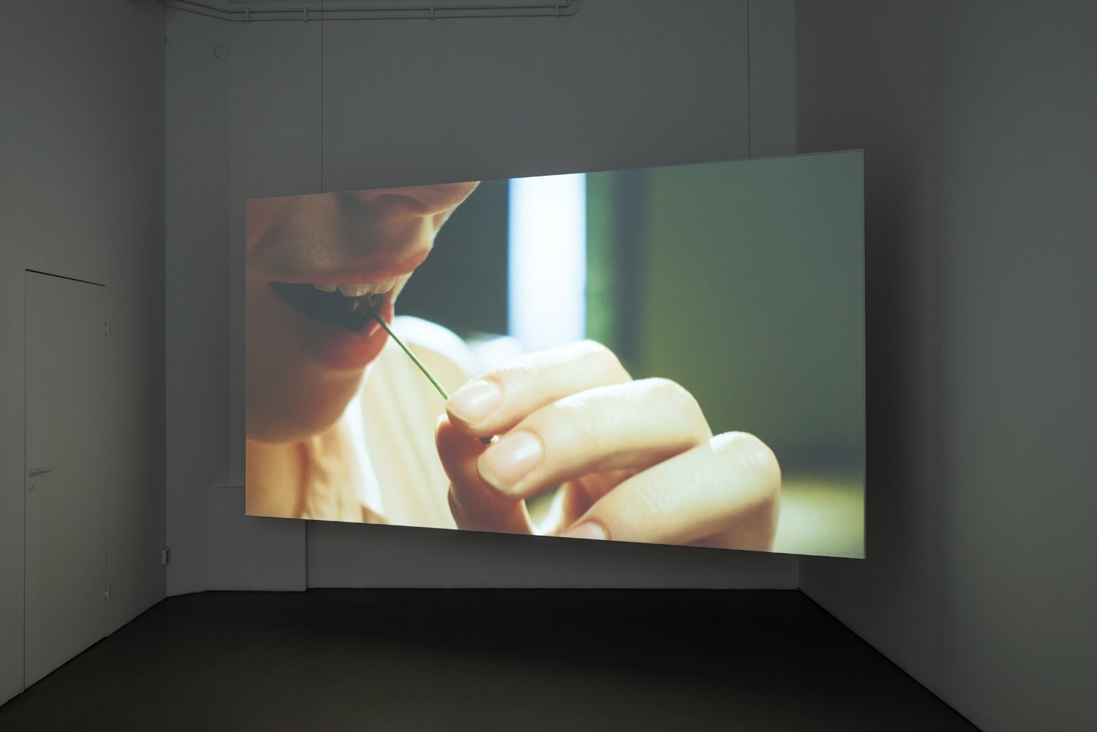 Kersentijd (Cherry season), 2012, 35mm film loop, 2'25'', digitally projected. Installation view Marijke van Warmerdam, Open, Galleri Riis, Stockholm, 2013