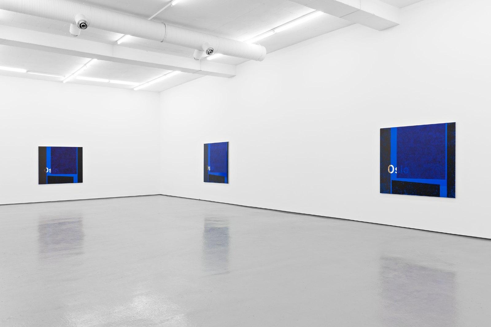 Installation view Sverre Wyller, Oslo, Galleri Riis, Oslo, 2014