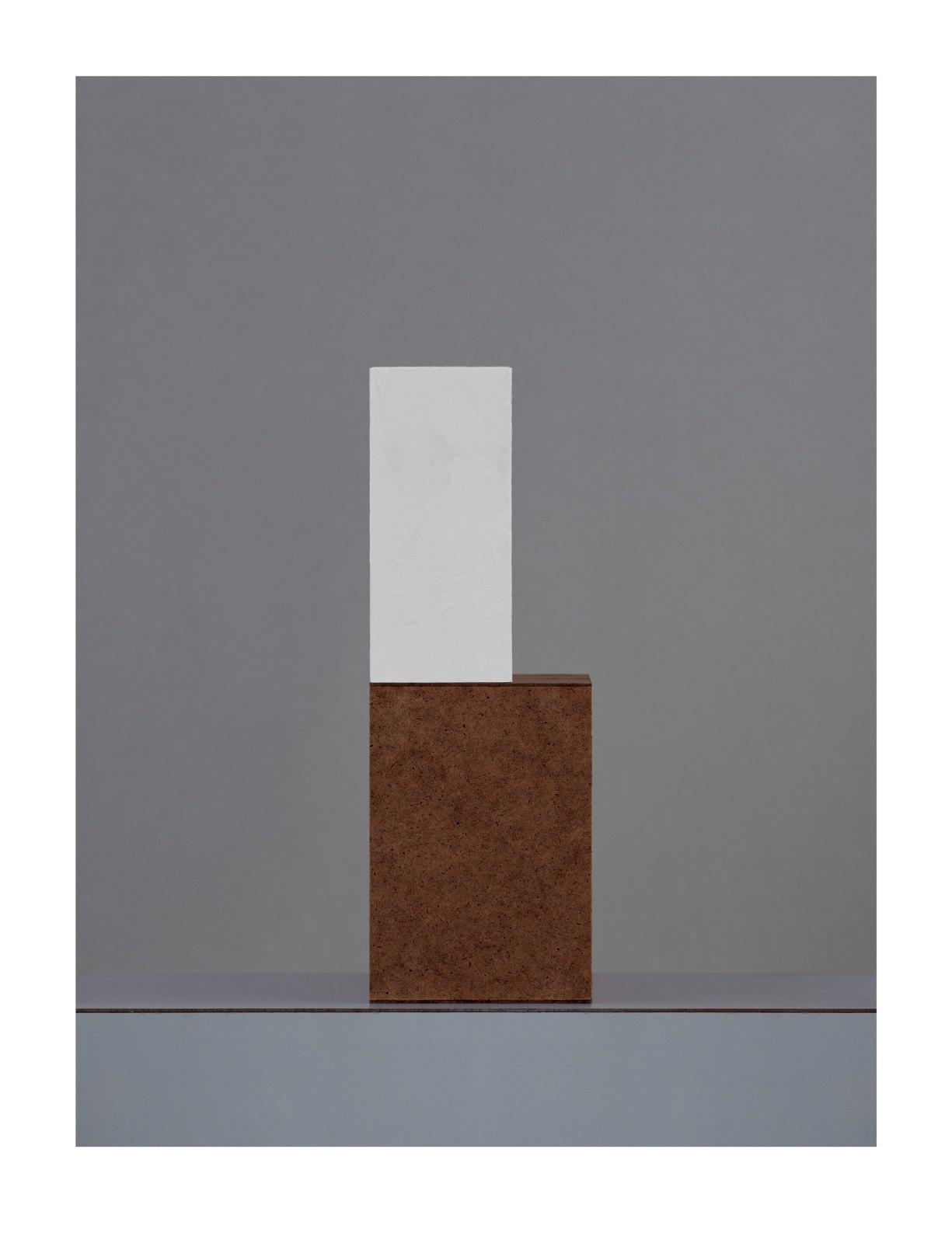 Austiére I, 2012, giclée print on Wandflies on aluminium, 83 x 63 cm
