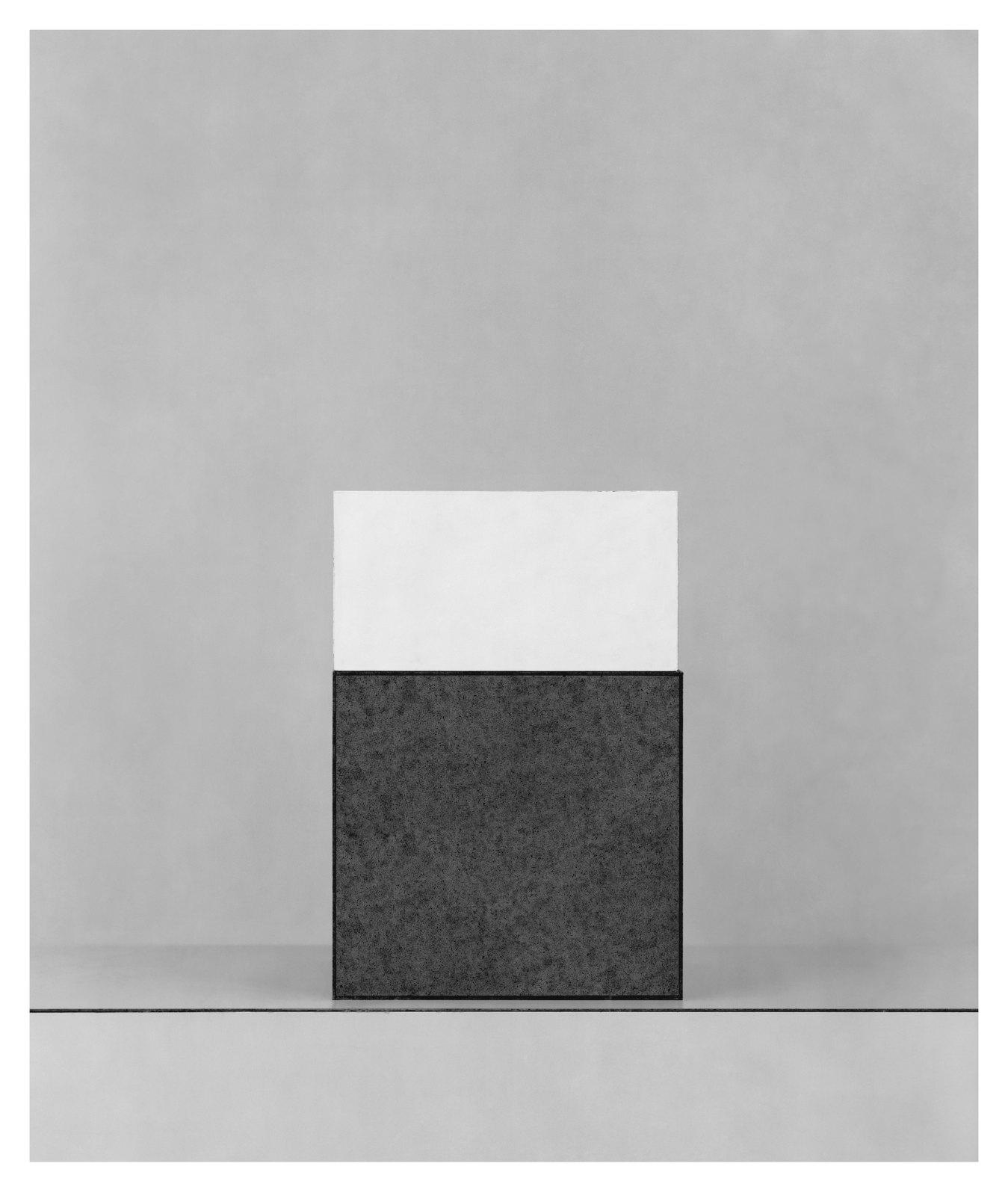 Austiére III, 2012, giclée print on Wandflies on aluminium, 100 x 84 cm