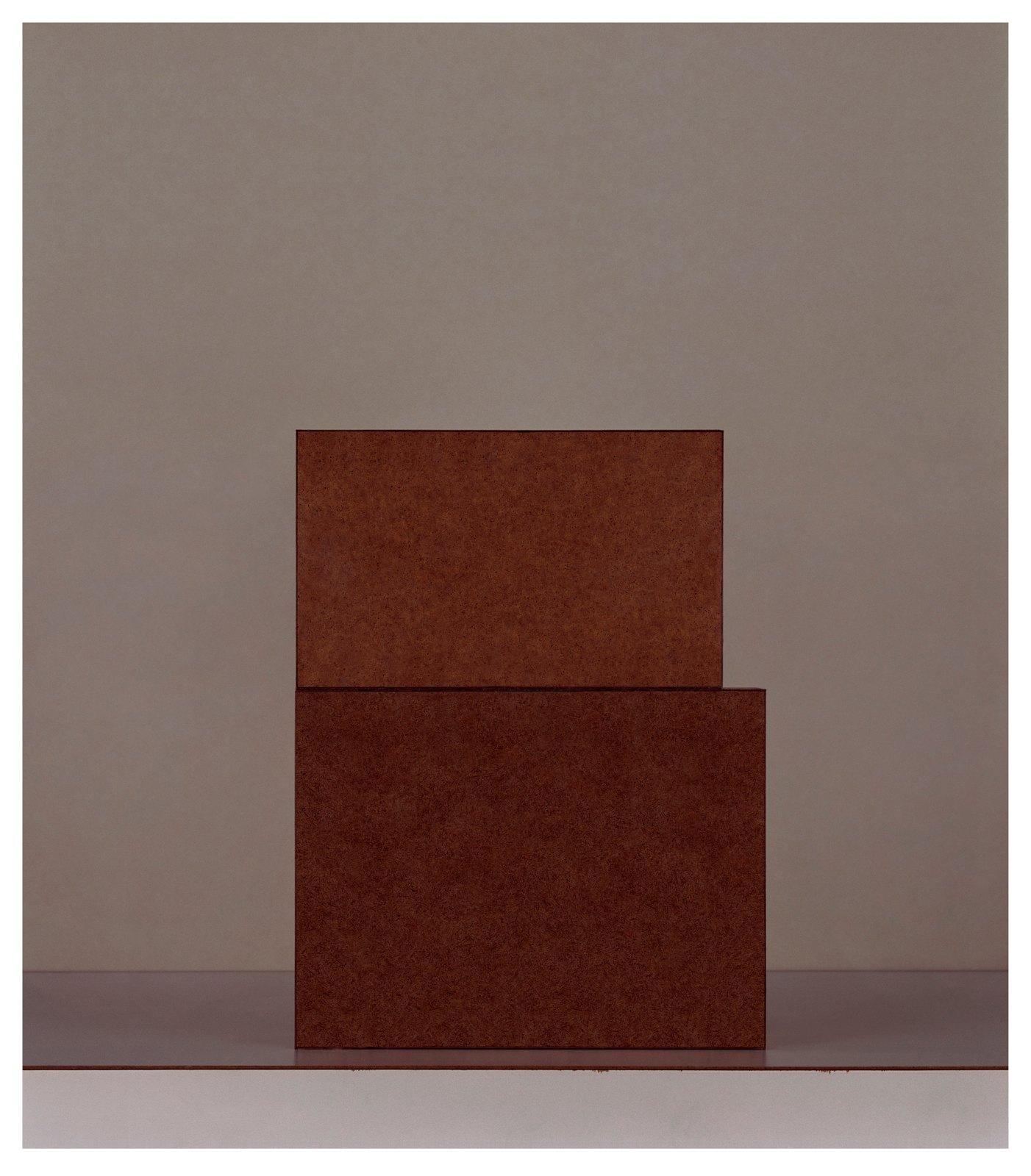 Austiére IV, 2012, Giclée print on Wandflies on aluminium, 91 x 79,5 cm