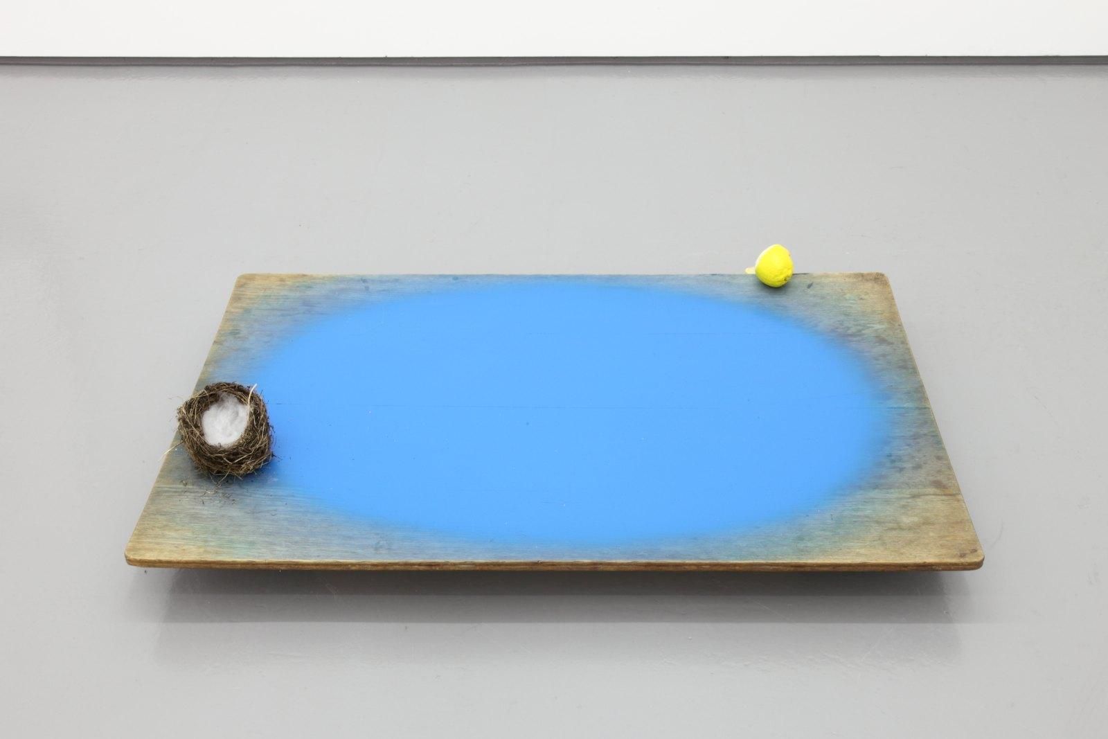 Marijke van Warmerdam, Safe and Sour, 2004, mixed media, 20 x 120 x 117 cm