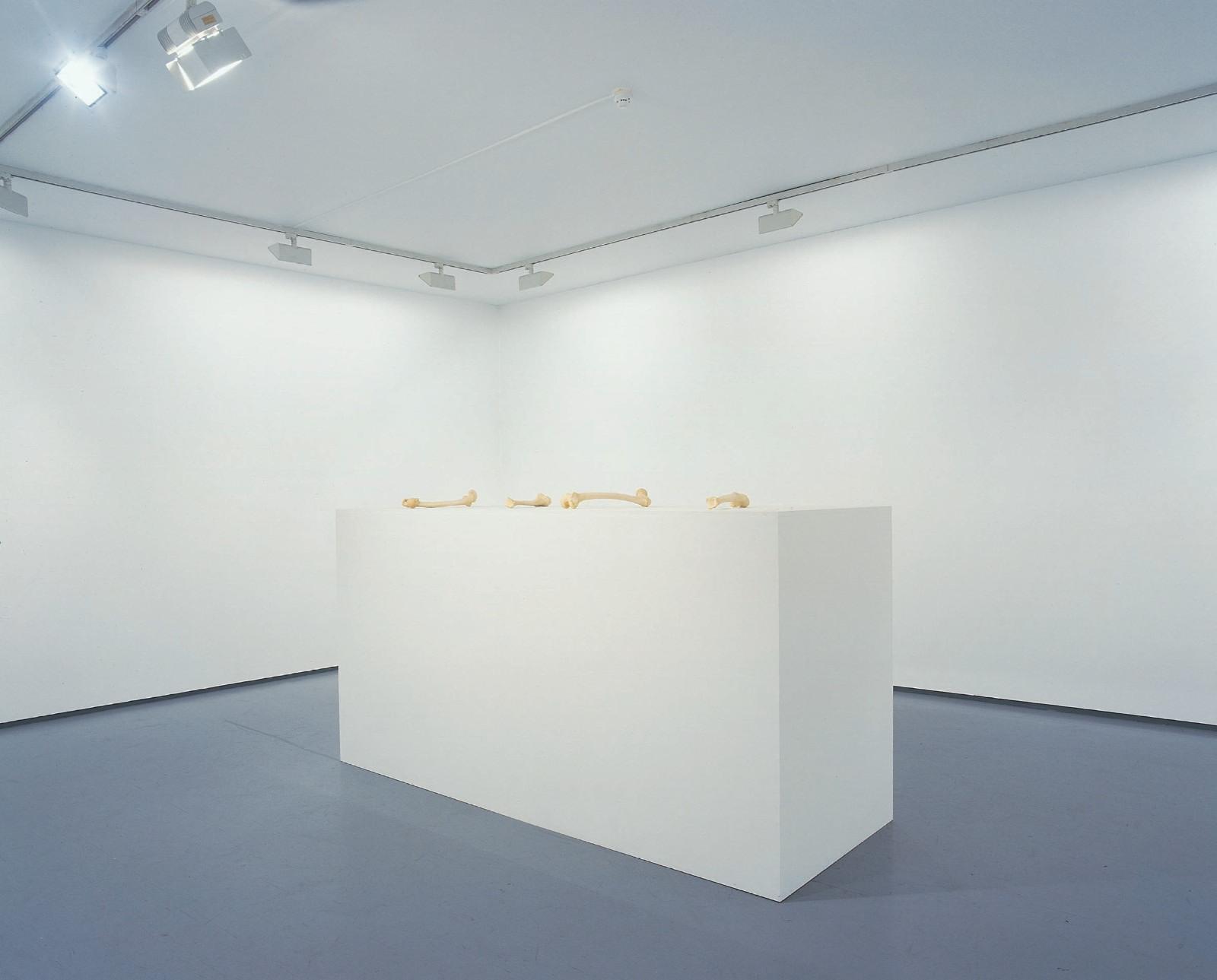 """Installation view """"""""Dagen er så kort men natten er så lang"""", Galleri Riis 2003"""