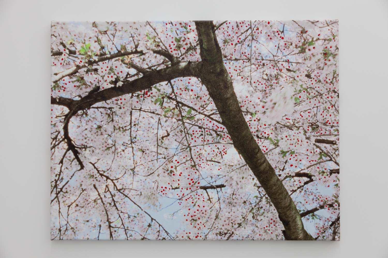 Blossom – seen Ofili (left), 2010, acrylic paint, inkjet print on canvas, 59 x 76 cm