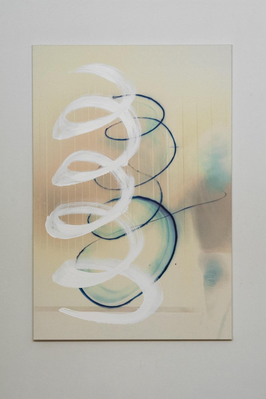 Marijke van Warmerdam, Speedy Spiral, 2009, Acrylic paint, inkjet print on canvas, 200 x 135 cm