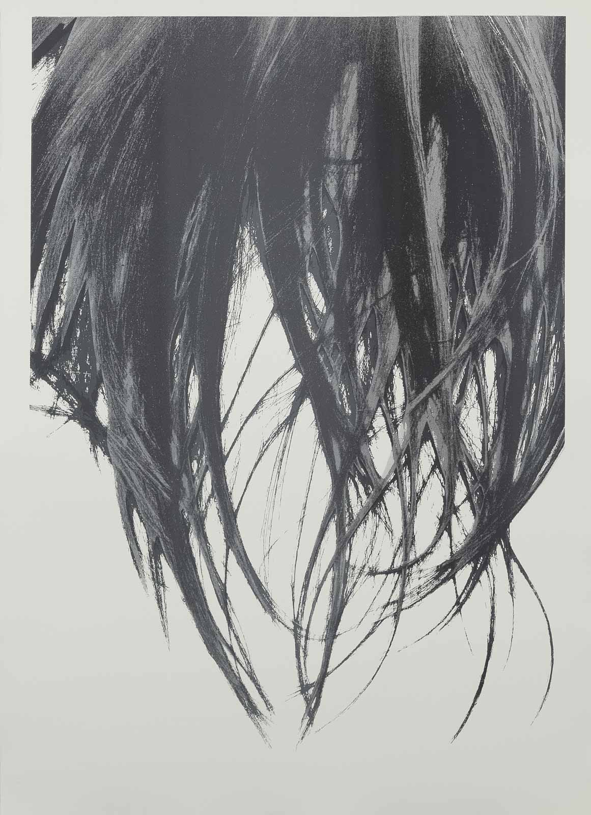 gray scale, 2017, silkscreen print, 107 x 76,5 cm, No. 1 from an edition of 17 unique prints