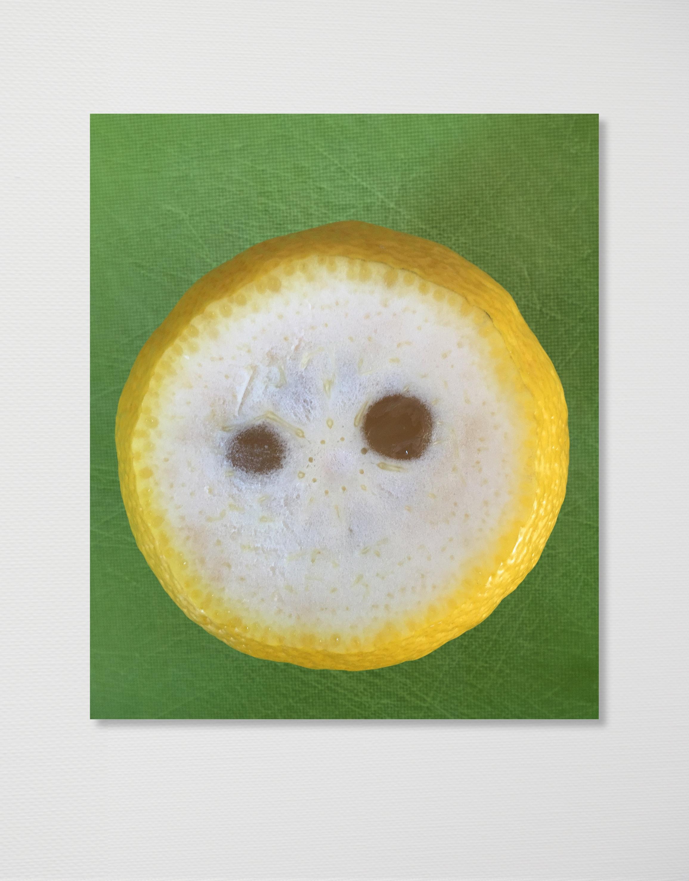 Sourpuss, 2016,  C-print mounted on dibond, 100 x 84 cm
