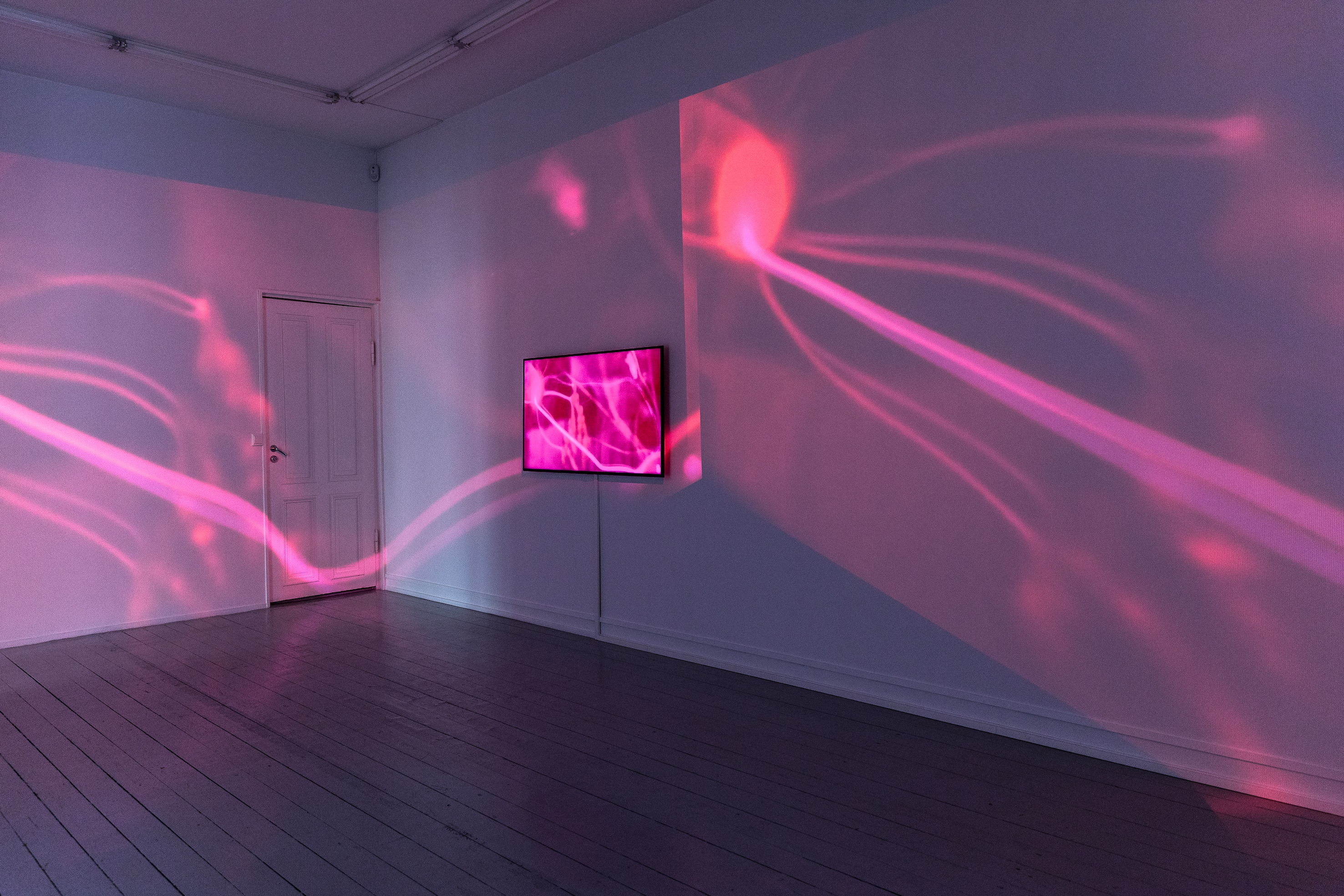 Pulses, 2018, Video, 17 minutes and 58 second loop, color and audio, Kirlian photography and sound Valdemar Asp, Tesla sphere and sound Christine Ödlund, Edition of 5