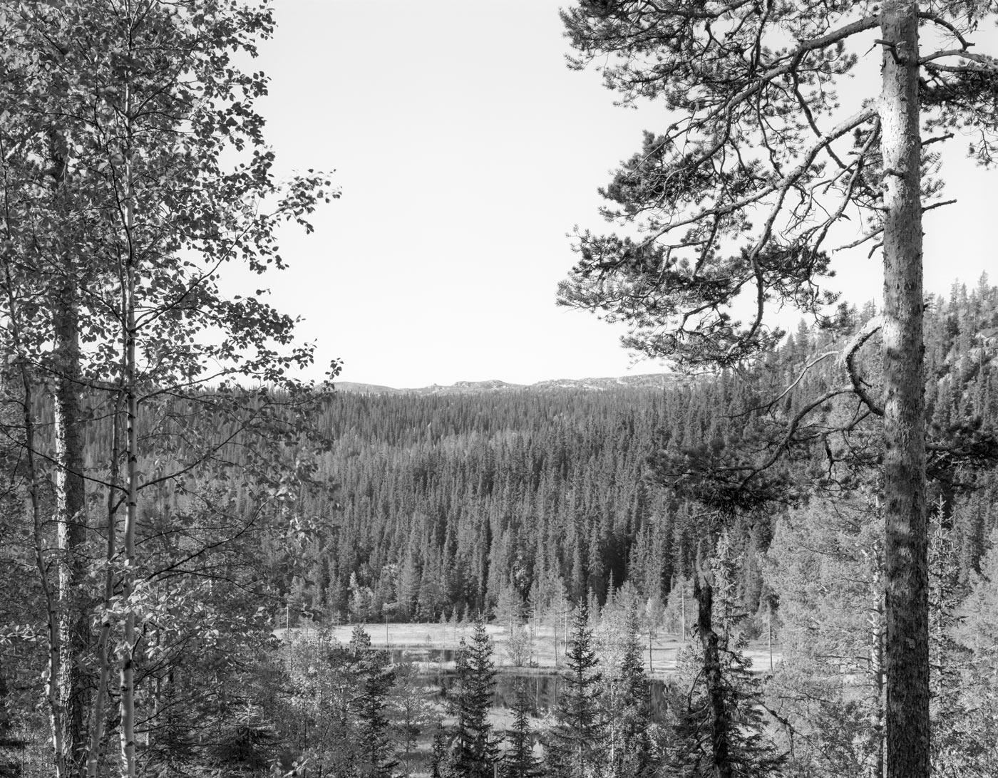 Landskap nr. 37, Eggedal, 1990/1991. Vintage silver gelatin print, 39 x 49 cm (image) / 50 x 60 cm (paper). Unique