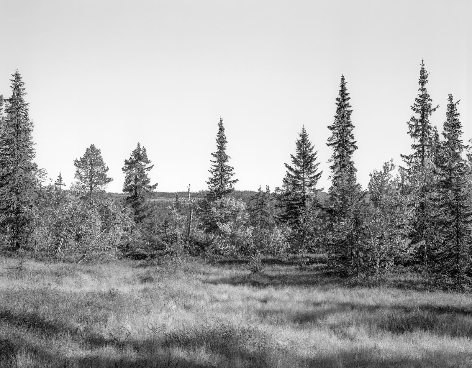 Landskap nr. 21, Eggedal, 1990/1991. Vintage silver gelatin print, 39 x 49 cm (image) / 50 x 60 cm (paper). Unique